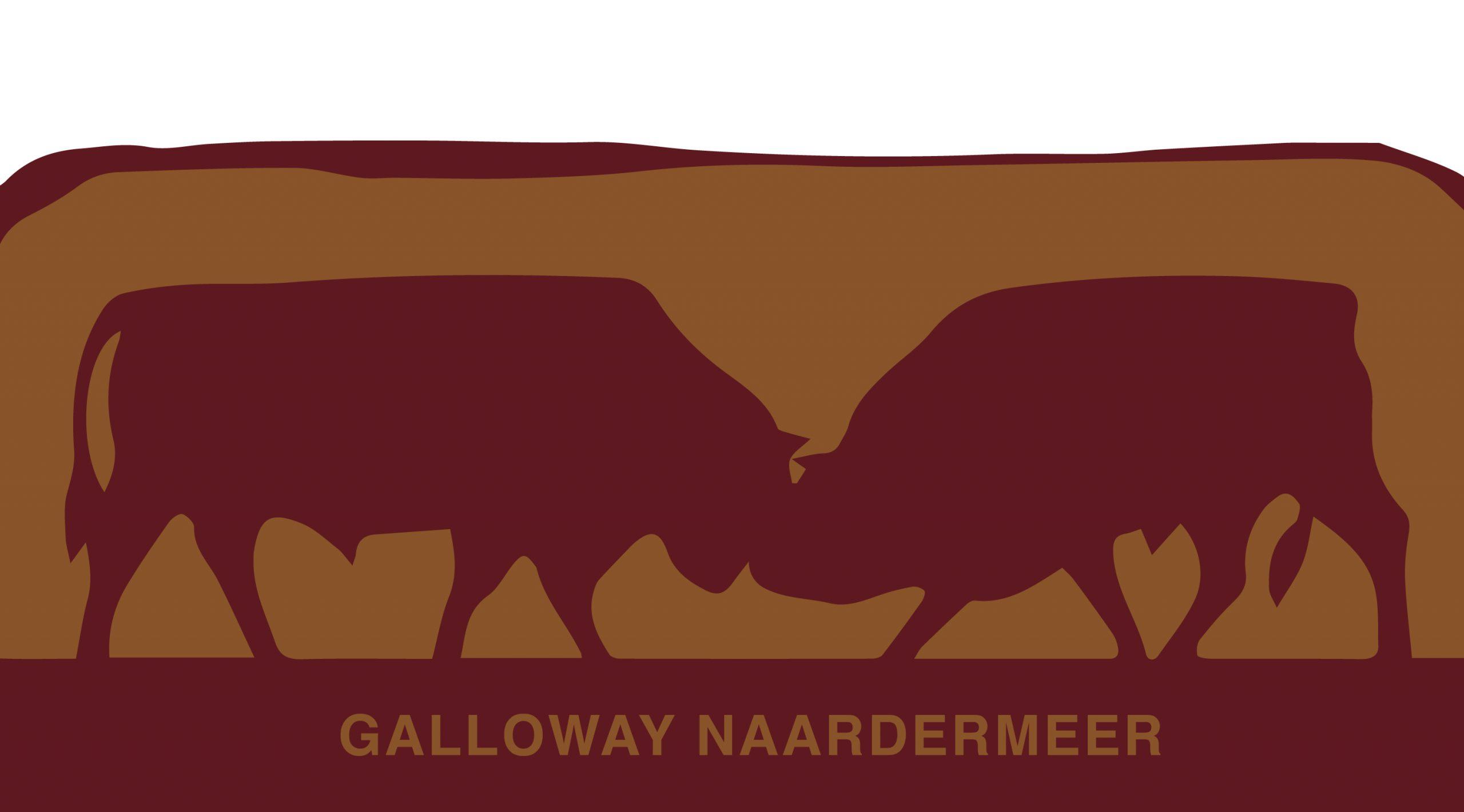 Galloway_Logo_3000px